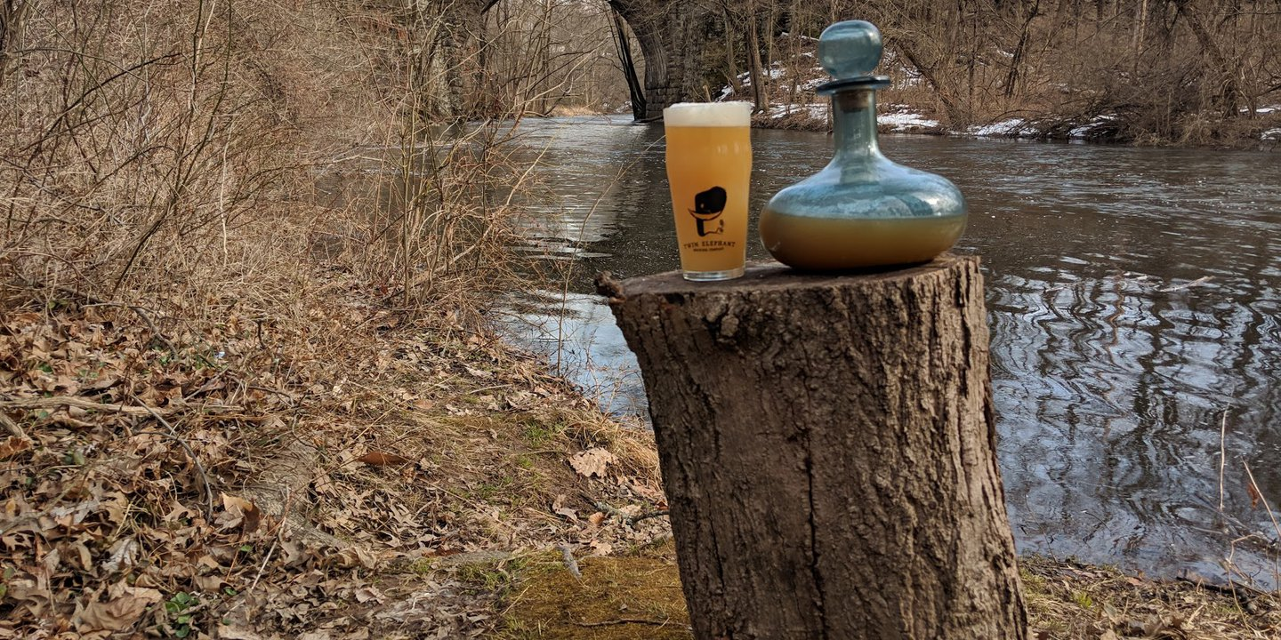 Twin Elephant Brewing Outdoor Beer Picture
